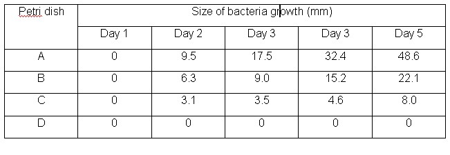 rate of bacteria growth